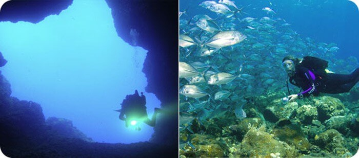 Diving in the Protected Marine Area of Portovenere