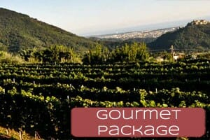 thumb-gourmetpackage300