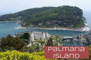thumb-palmaria-island-300