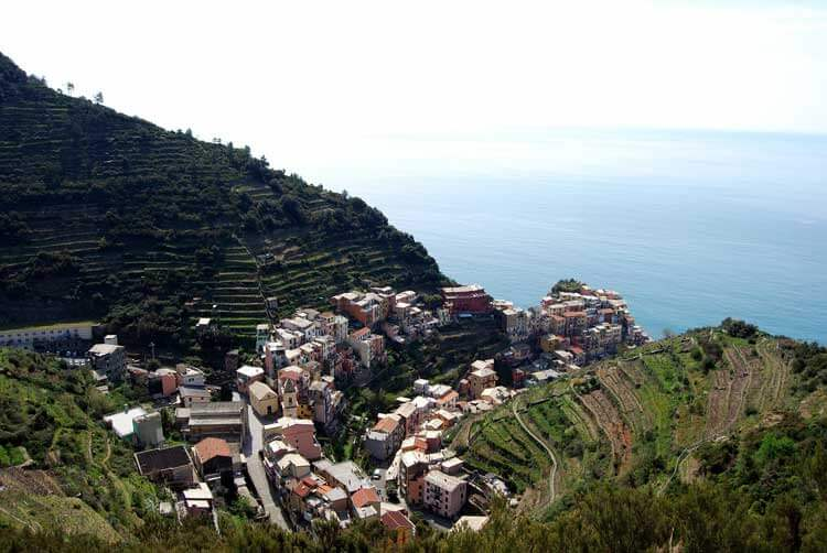 Vineyards around Manarola, Cinque Terre
