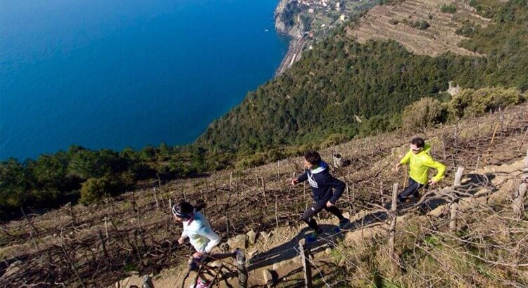 SciaccheTrail: race among the vineyards in Cinque Terre, Liguria