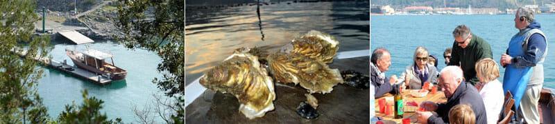 Oyster Tour in La Spezia, Portovenere, Liguria